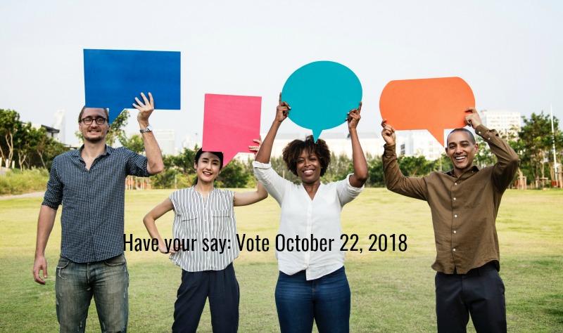Vote in municipal election